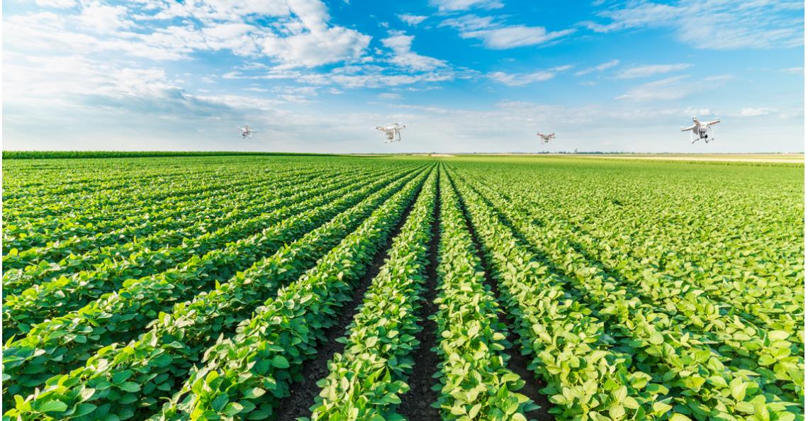 Zwermrobotica zorgt voor samenwerking drones in landbouw