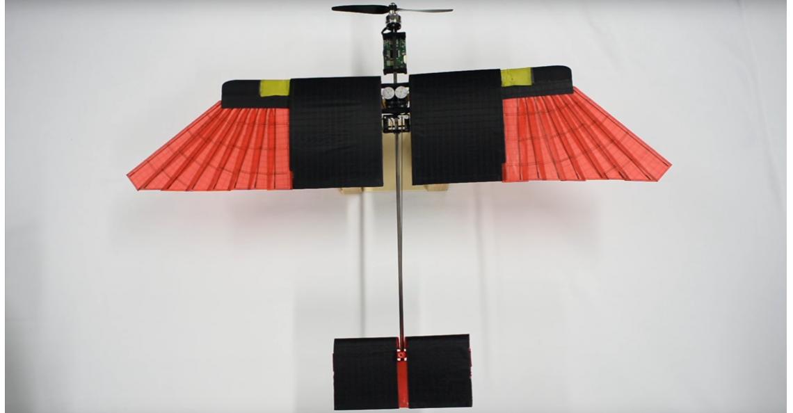 Italiaanse drone vliegt als vogel door de lucht
