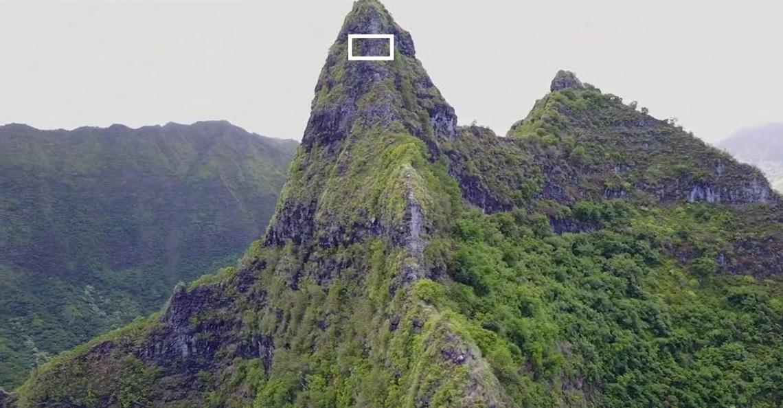 Drones vinden met uitsterven bedreigde planten op Hawaii