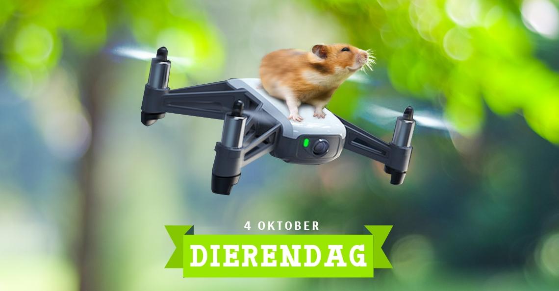 Dierendag: drones en dieren