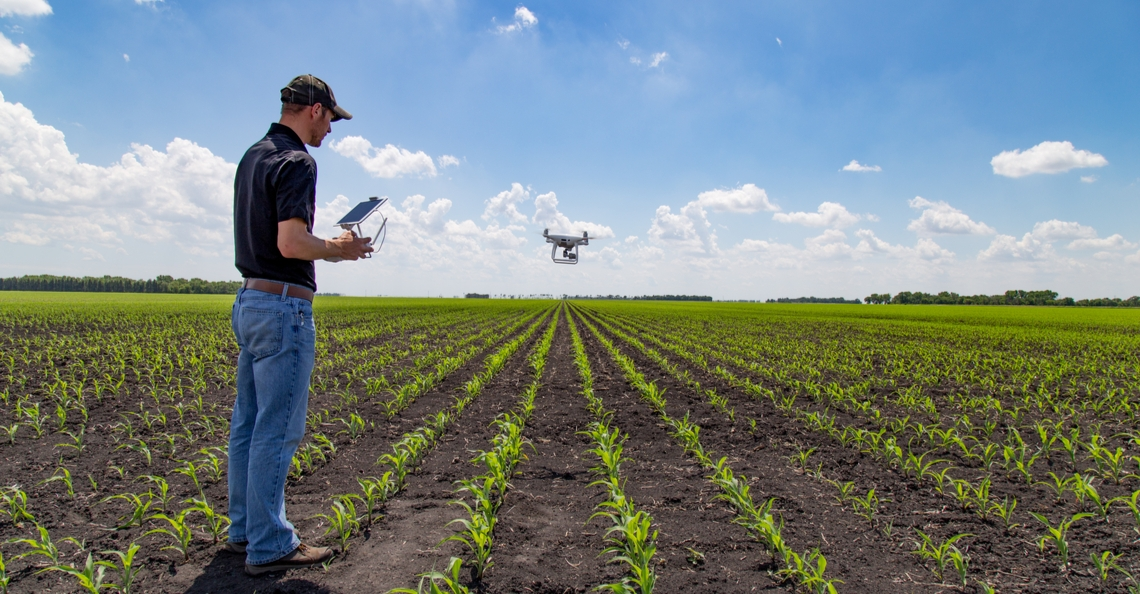Waterschap Vechtstromen zet drones in voor controle pesticidengebruik