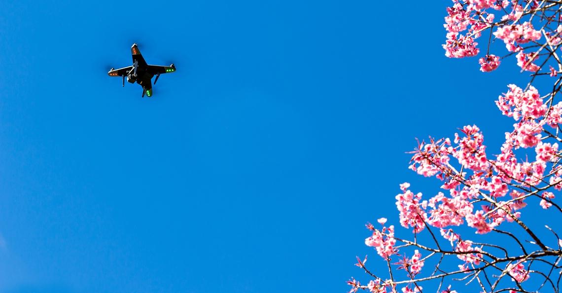 Japan maakt wet tegen vliegen met een drone onder invloed