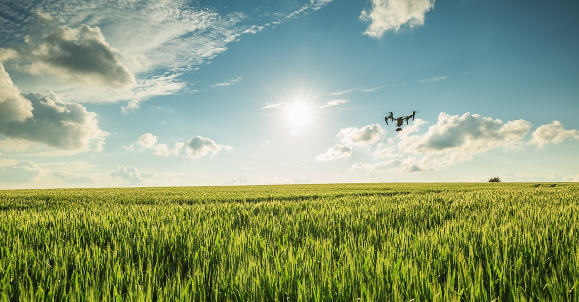 Limburgse studenten gebruiken drones om wildschade in kaart te brengen