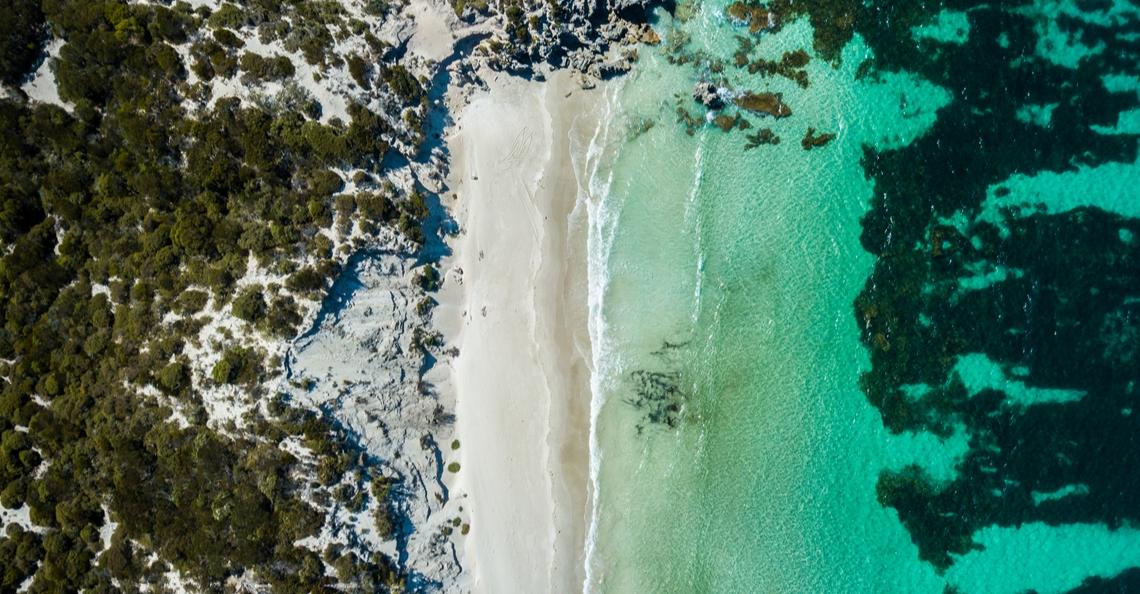 Drones zoeken en redden wilde dieren op Kangaroo Island