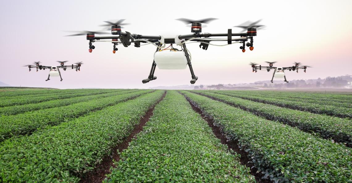 Drone dropt insecten om kleinere insecten te eten in Flevoland