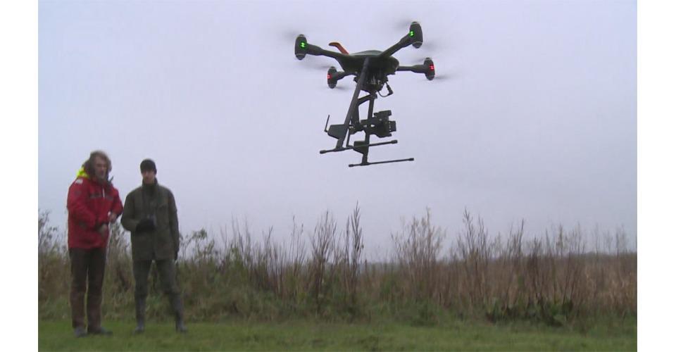 Drone filmt zeearend view voor nieuwe natuurfilm: Holland, natuur in de delta